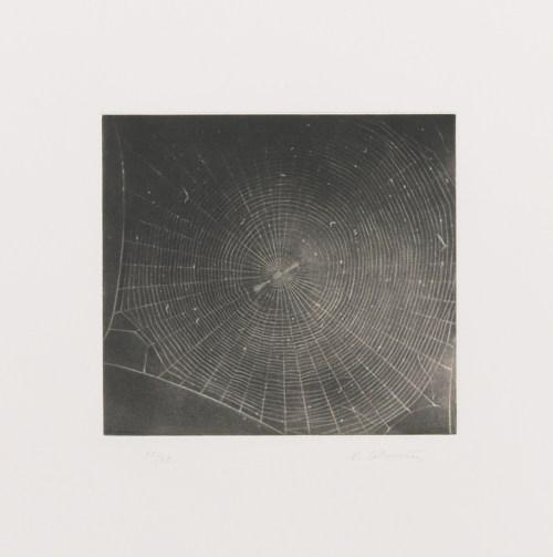 Vija Celmins-Untitled (Web 2)-2001