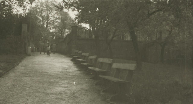 Josef Sudek-Select Images, from In the Magic Garden series-1950