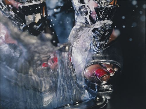 Marilyn Minter-Swell-2010