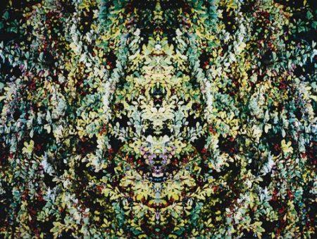 Piotr Uklanski-Untitled (Foliage)-2003