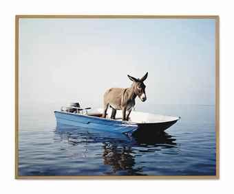 Paola Pivi-Untitled (Donkey)-2003