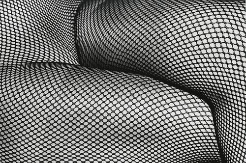 Daido Moriyama-Tights, No. 19-1987