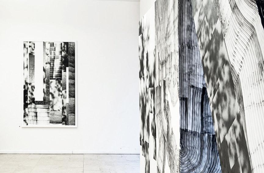 D406 Gallery