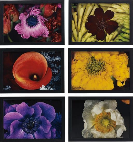 Nobuyoshi Araki-Selected Images From Shijyo, Tokyo - Marketplace Of Emotions And Kakyoku-1998