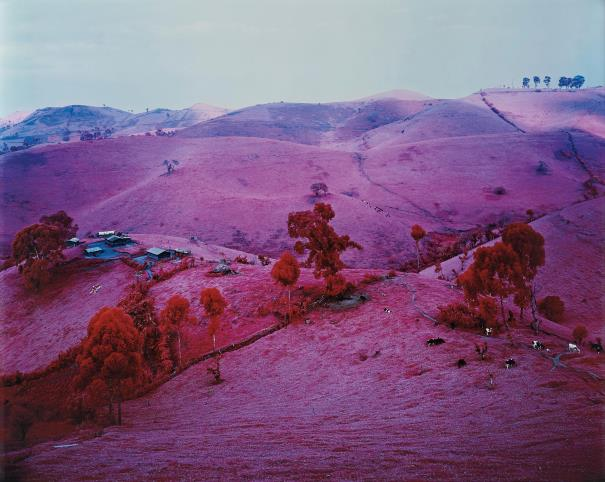 Richard Mosse-Endless Plain Of Fortune-2011