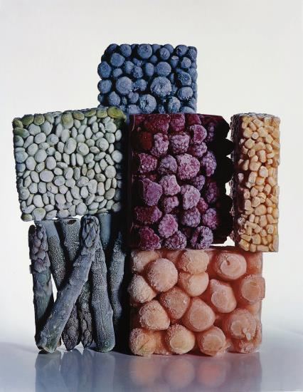 Irving Penn-Frozen Foods, New York-1977