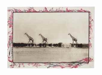 Peter Beard-Giraffes in Mirage on the Taru Dessert, Kenya, June 1960-1960