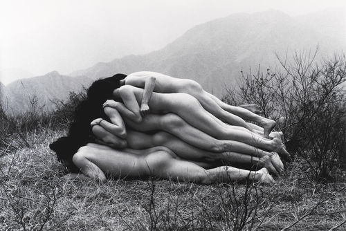 Cang Xin-To Add One Meter to an Anonymous Mountain-1995