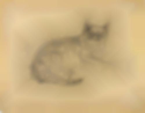 Tsuguharu Foujita-19 Plates, From A Book Of Cats (B. II.30.127)-1929