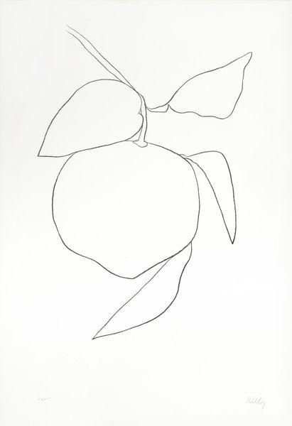 Ellsworth Kelly-Tangerine (Mandarine), from Suite of Plant Lithographs-1965