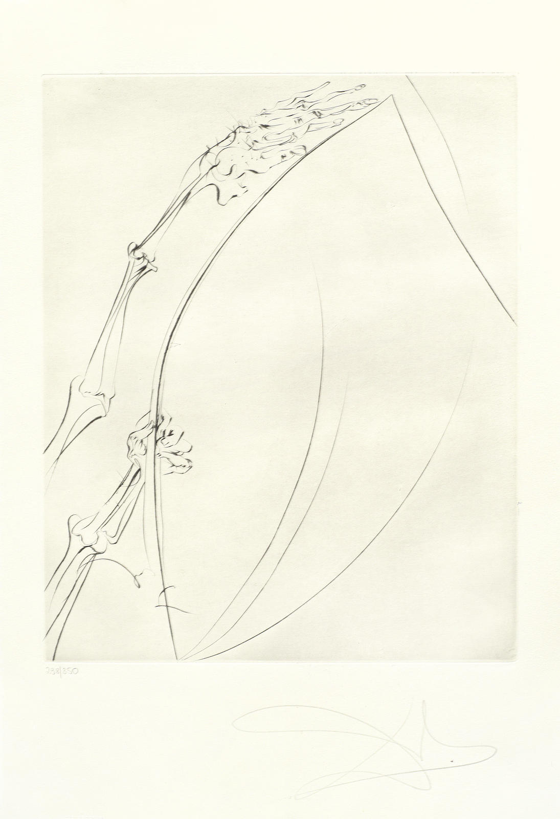 Salvador Dali-Three plates, from The Old Man and the Sea unframed-1974