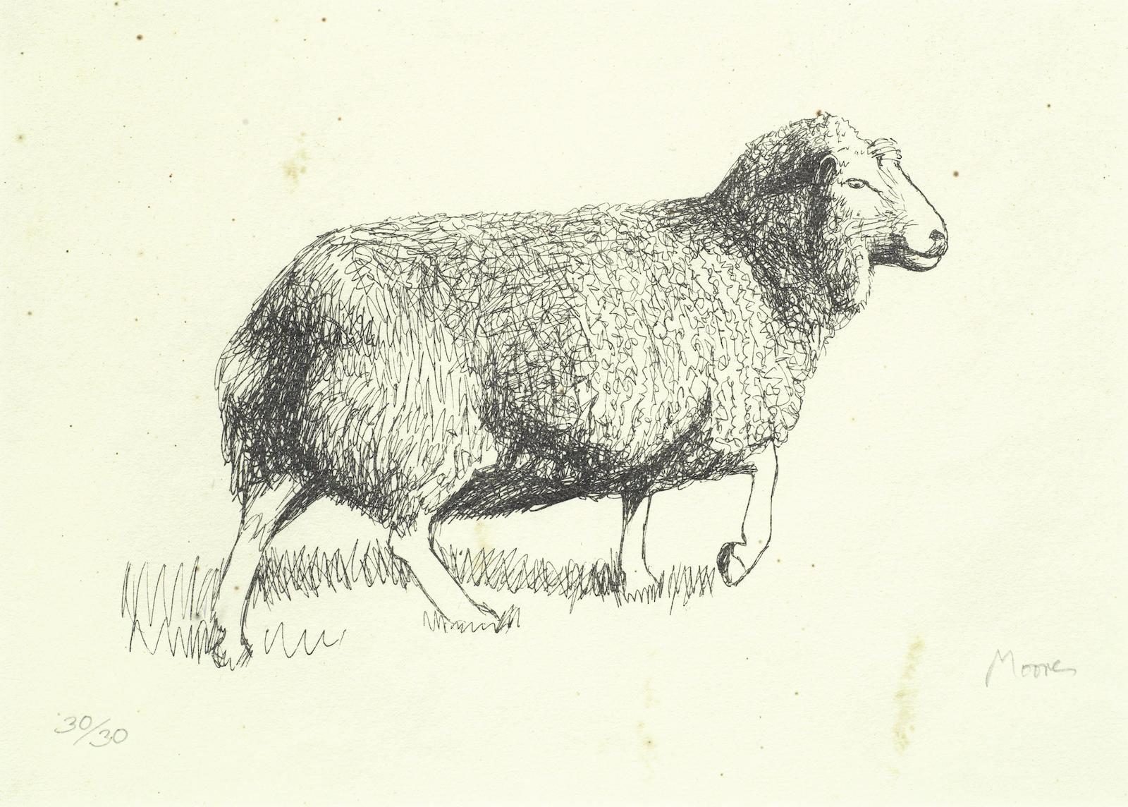 Henry Moore-Sheep Walking-1974