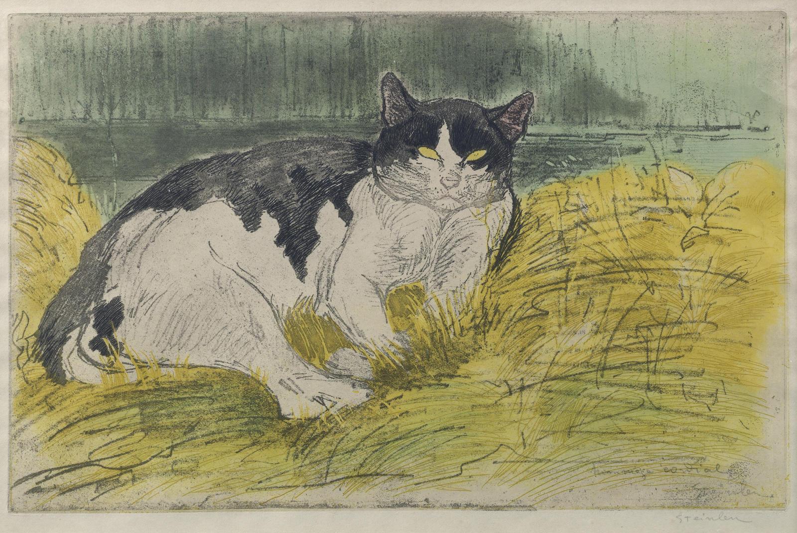 Theophile Alexandre Steinlen-Vieux chat noir et blanc dans l'herbe-1902