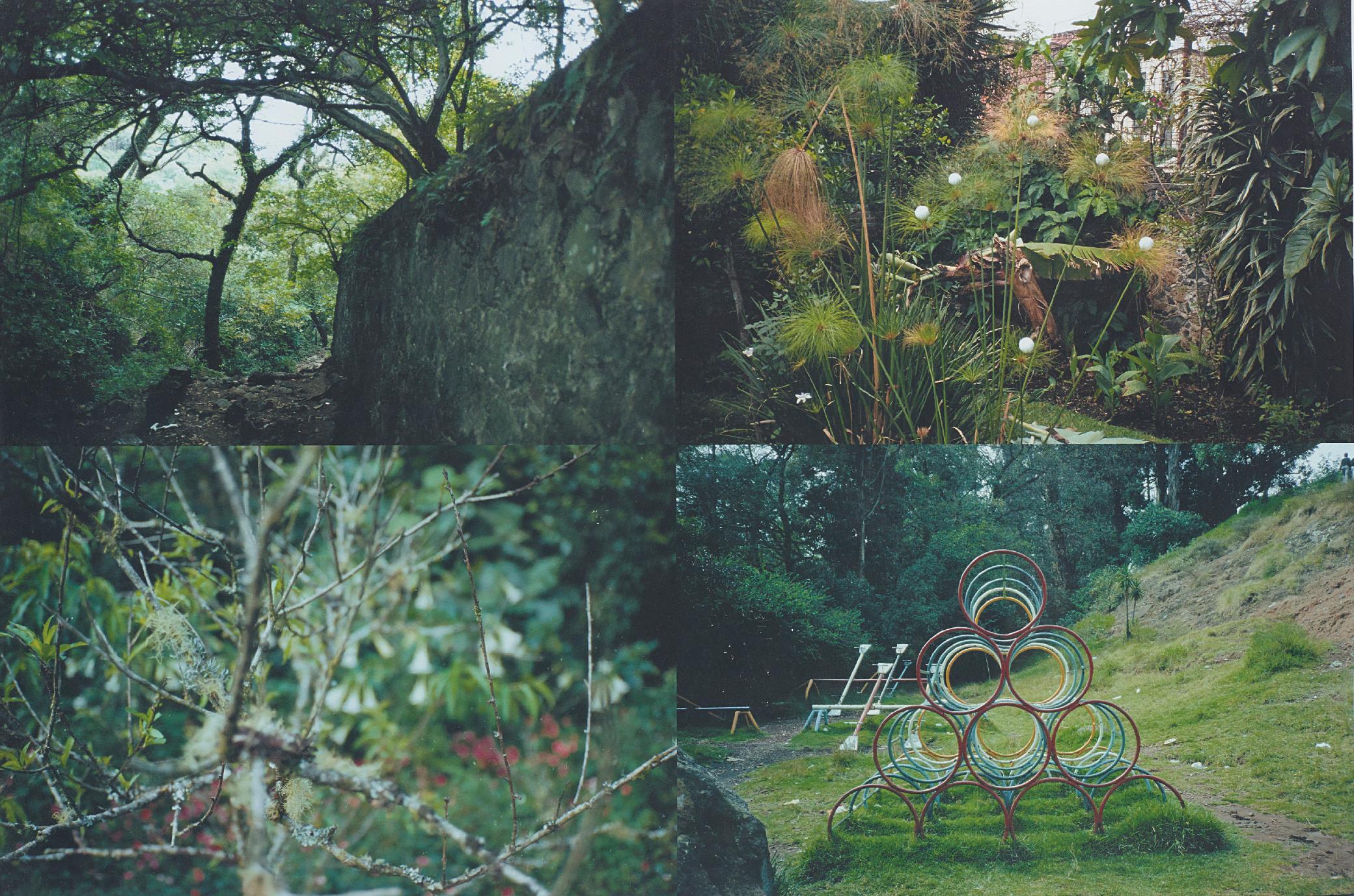 Gabriel Orozco-Quatro Parques-1997