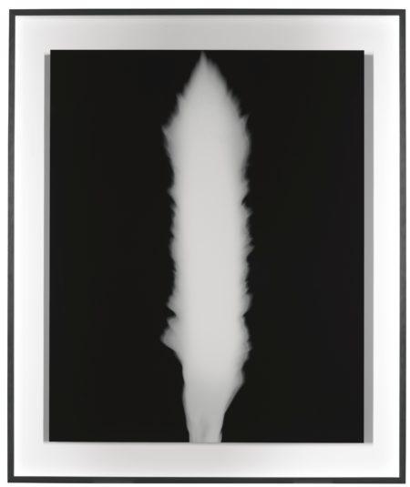 Hiroshi Sugimoto-In Praise Of Shadow-1998