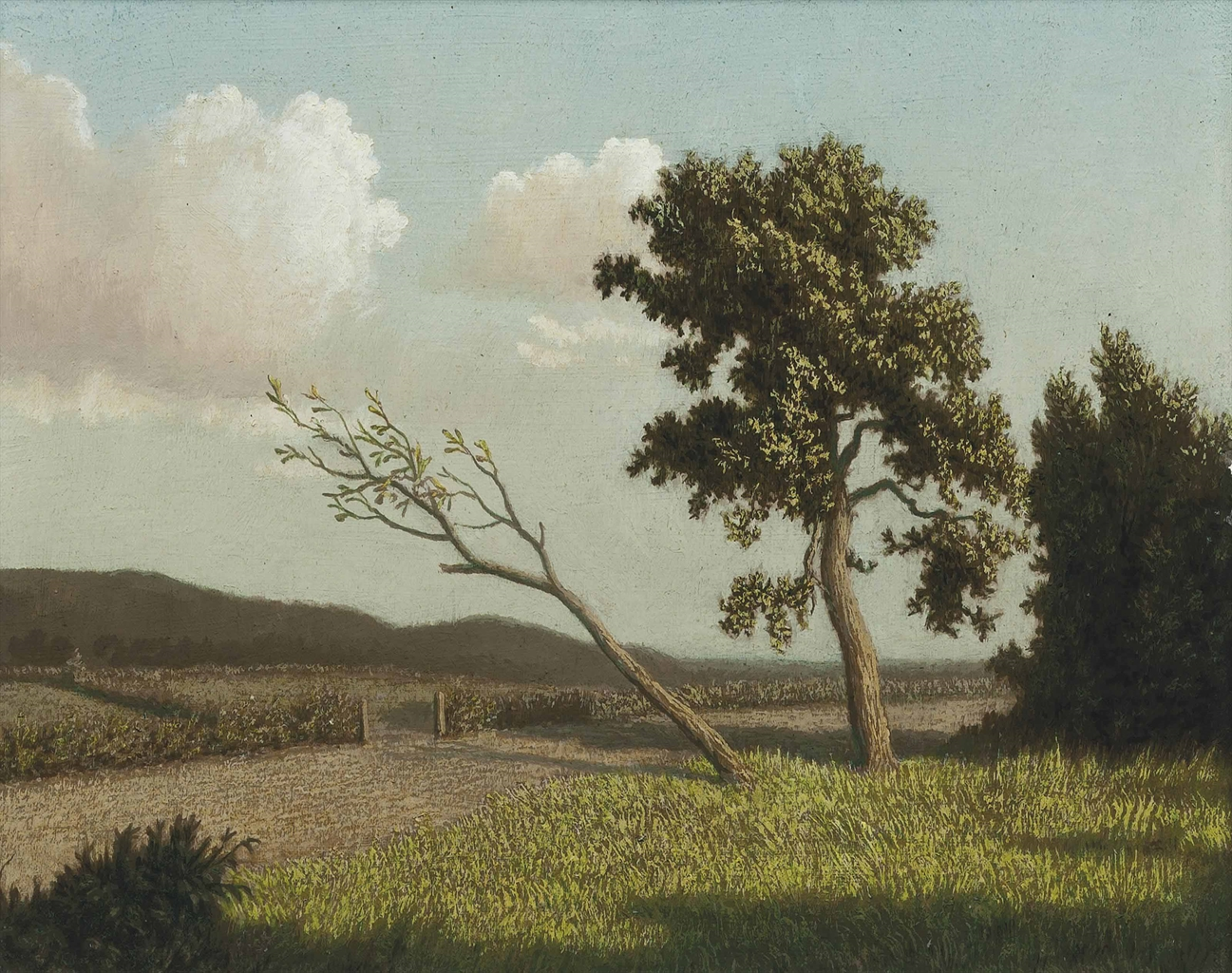 Algernon Newton-A Country Path-