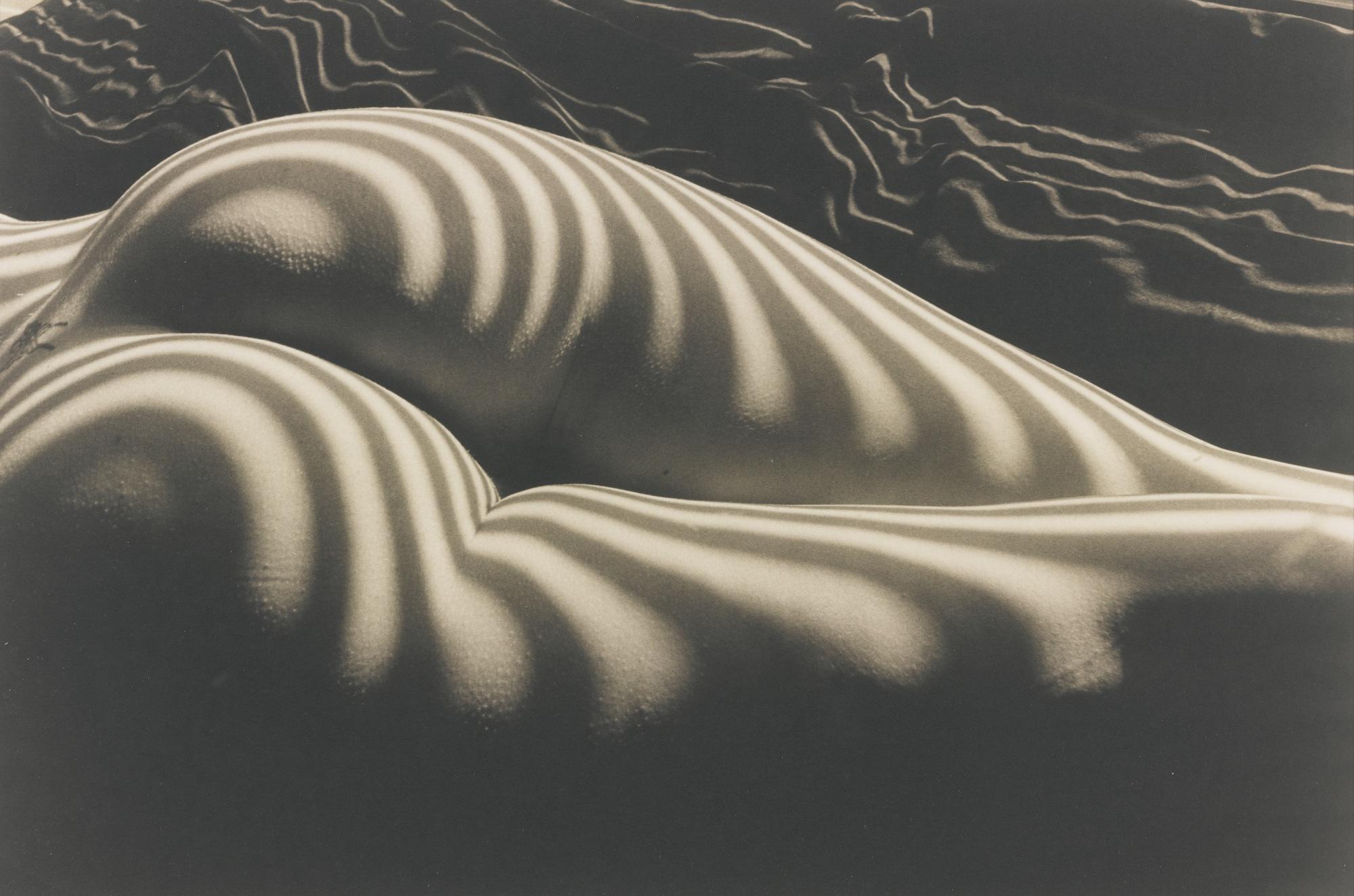 Lucien Clergue-Nu Zebre New York-1997
