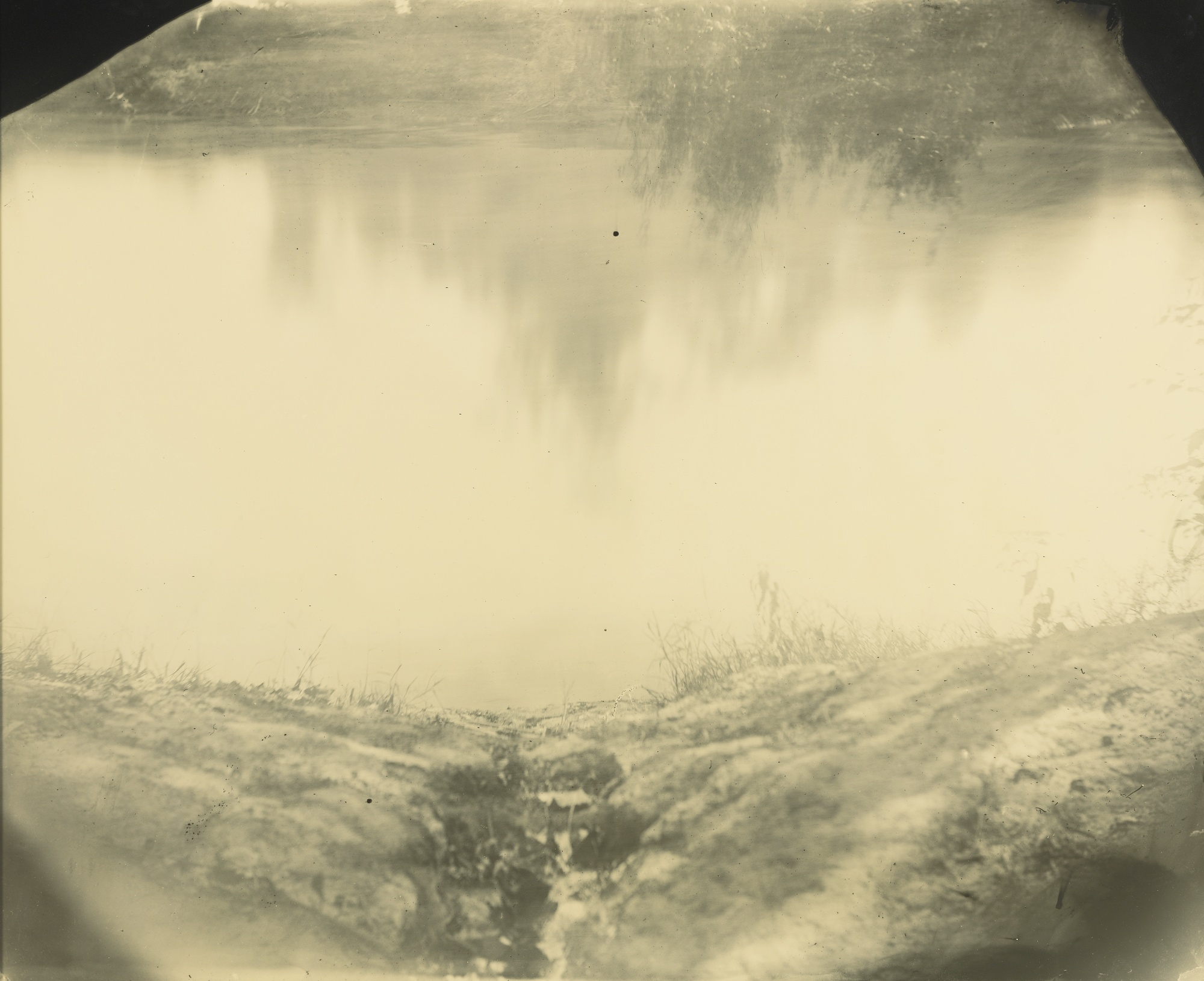 Sally Mann-Untitled (Deep South #34)-1998