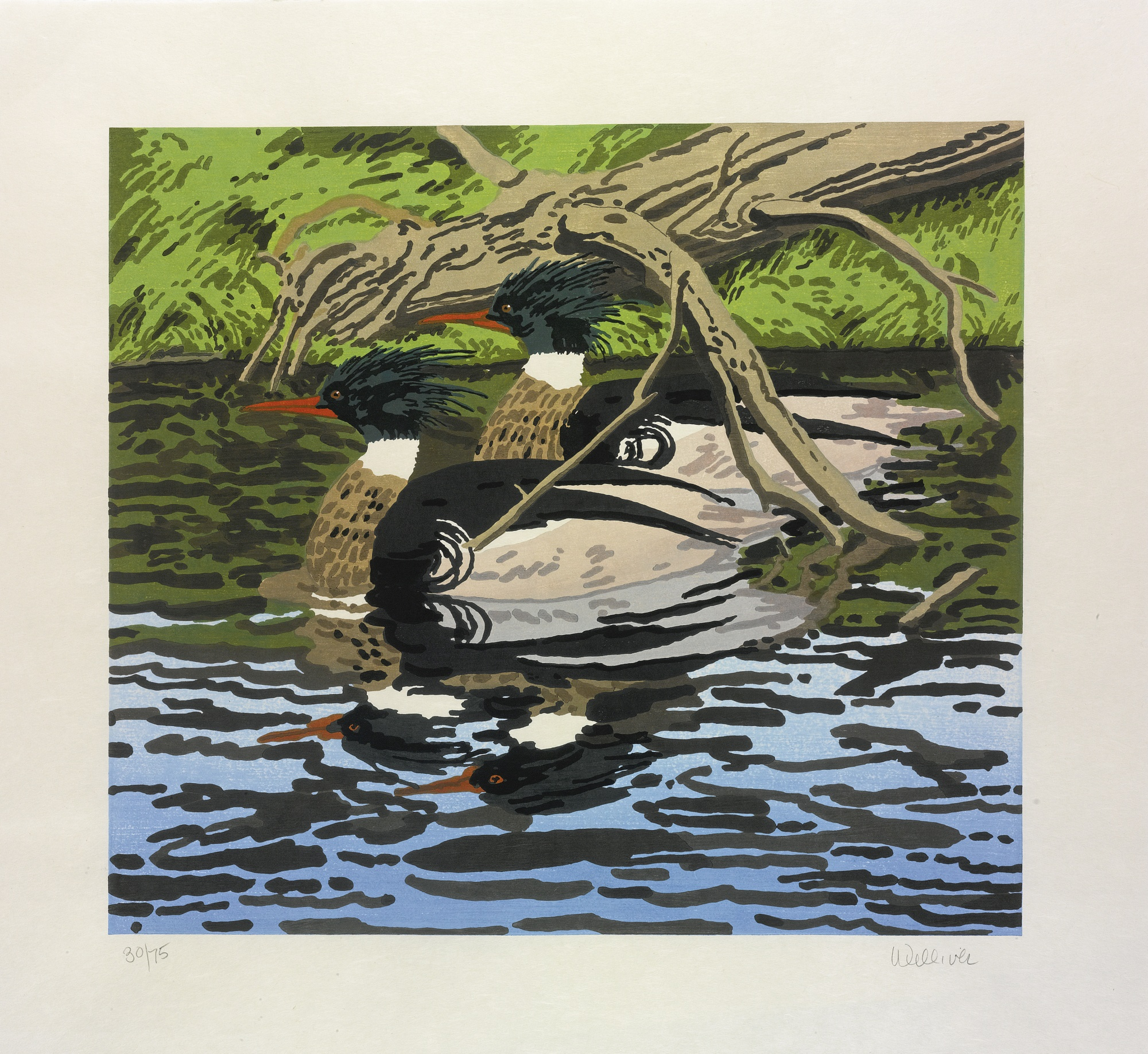 Neil Welliver-Two Mergansers-1992