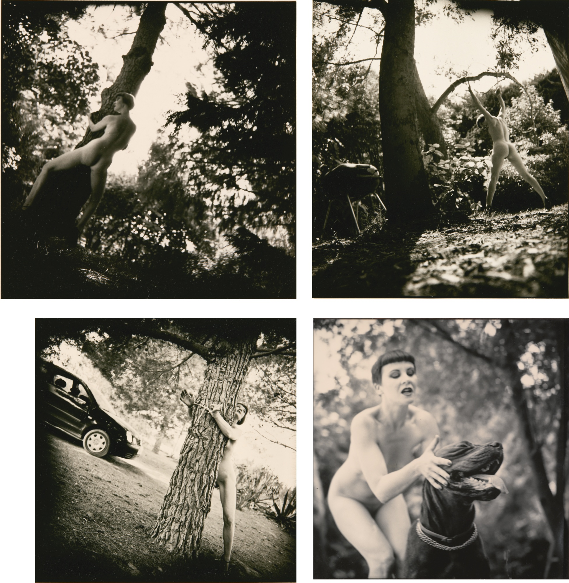 Gilles Berquet-Untitled (4Works)-2001