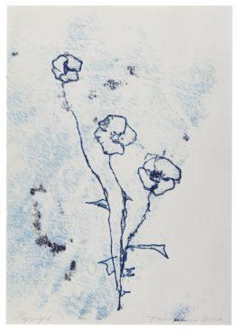 Tracey Emin-Poppys-2012