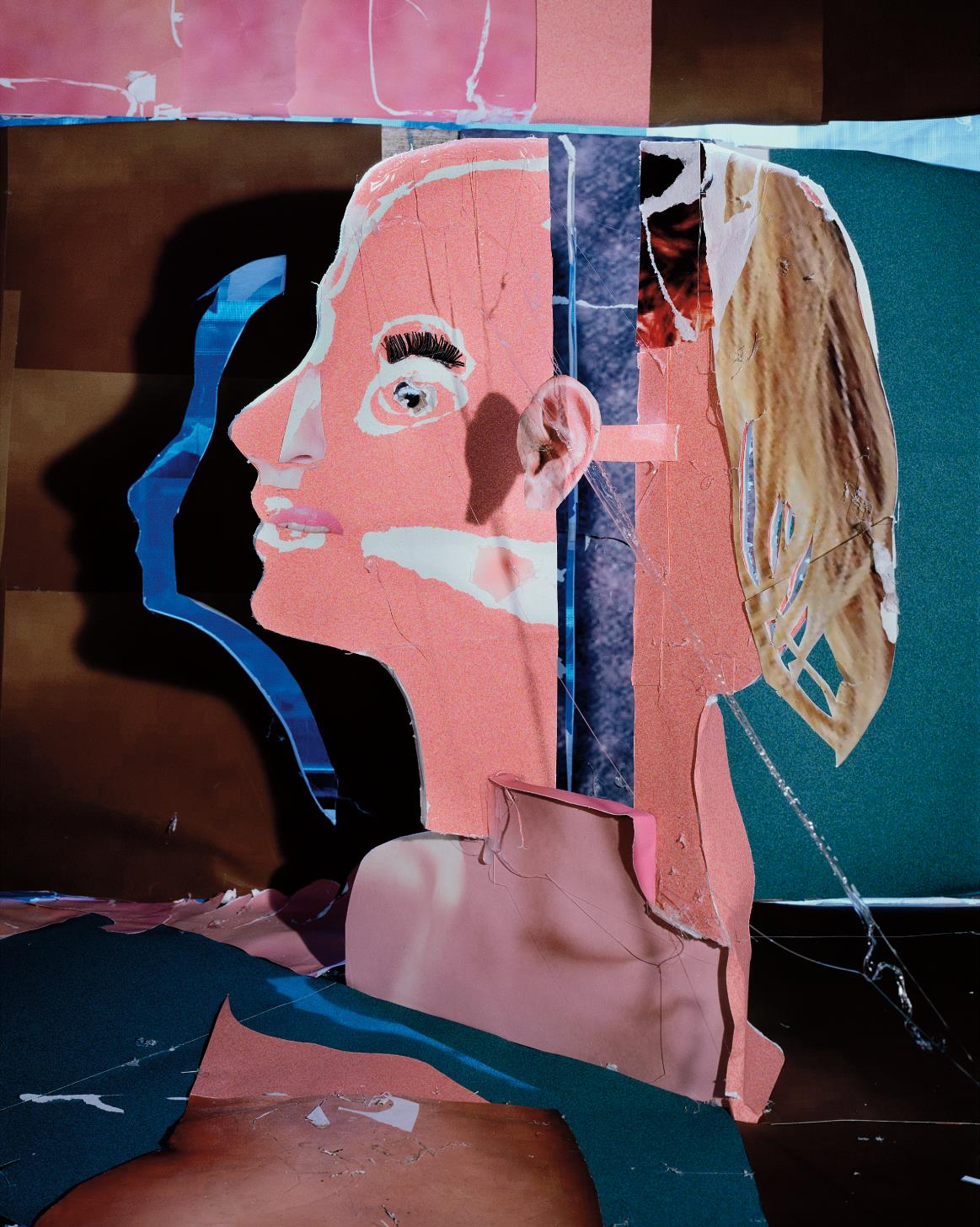 Daniel Gordon-Salmon Skin And Shadow-2010