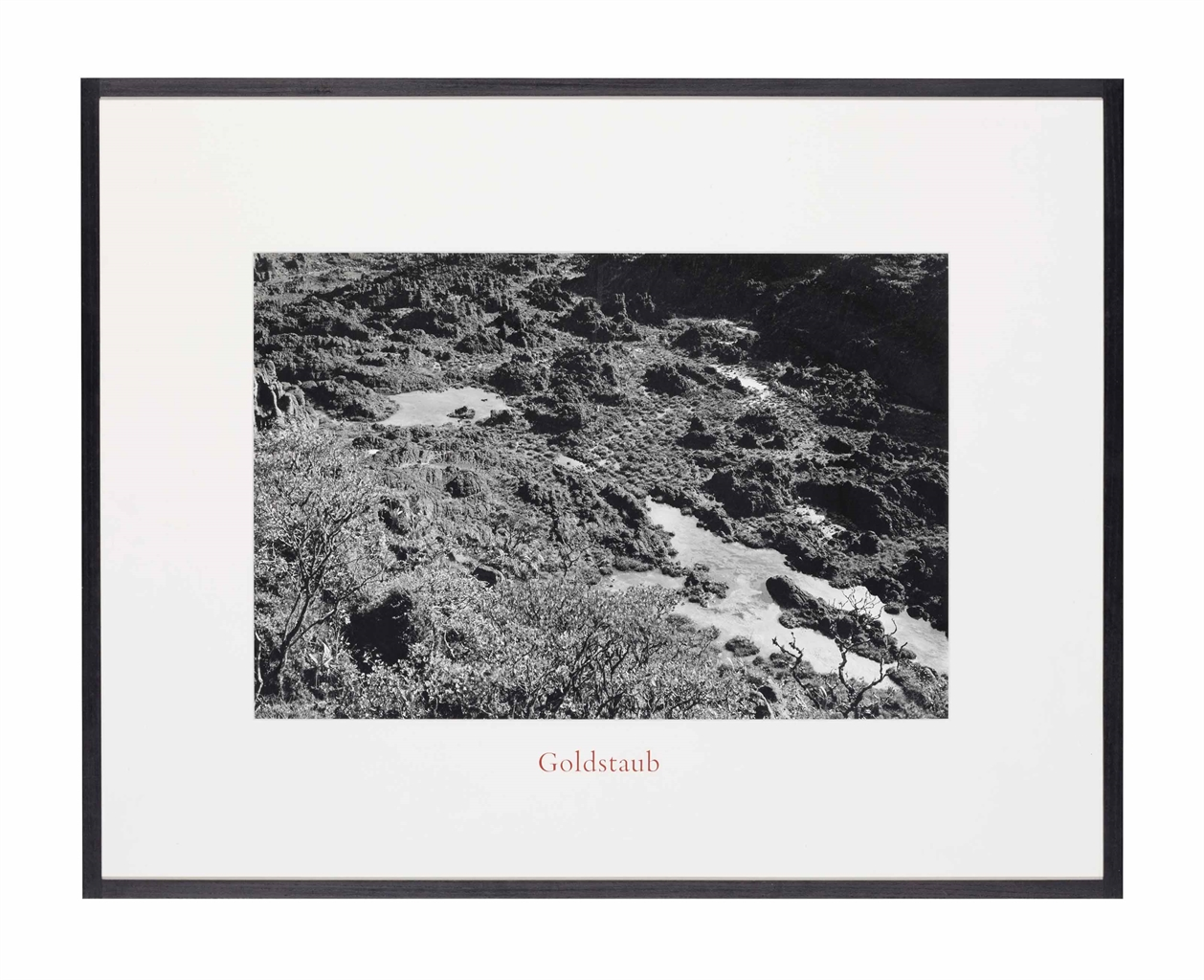 Lothar Baumgarten-Goldstaub (Gold Dust)-1977