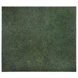 Neil Raitt-Evergreen-2013