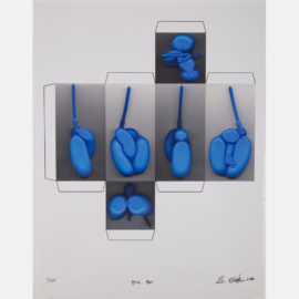 Tim Hawkinson-Bird Box-2006