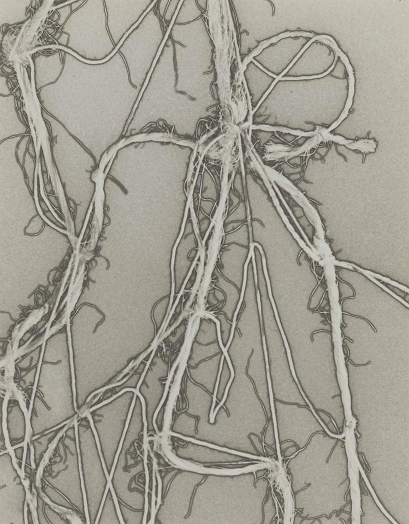 Man Ray-Enough Rope-1944