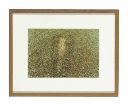 Ana Mendieta-Untitled, from Silueta Series, Iowa-1978