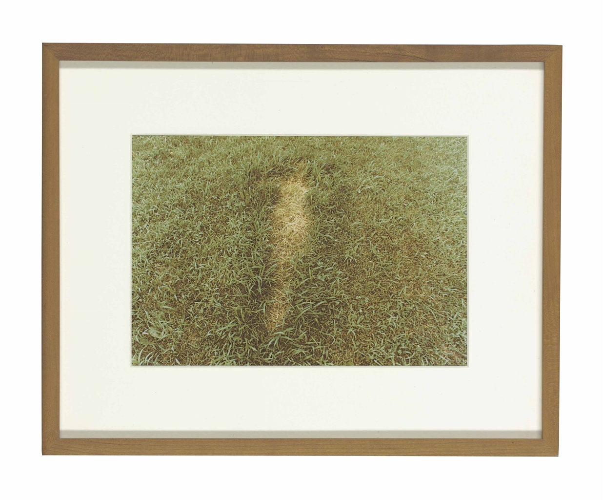 Ana Mendieta-Untitled, from Silueta Series, Iowa-1978