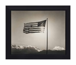 Robert Mapplethorpe-Flag-1987