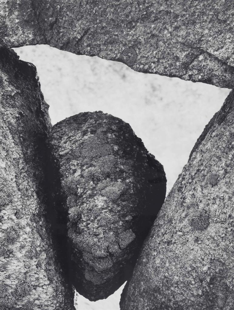 Aaron Siskind-Martha's Vineyard 112-1954