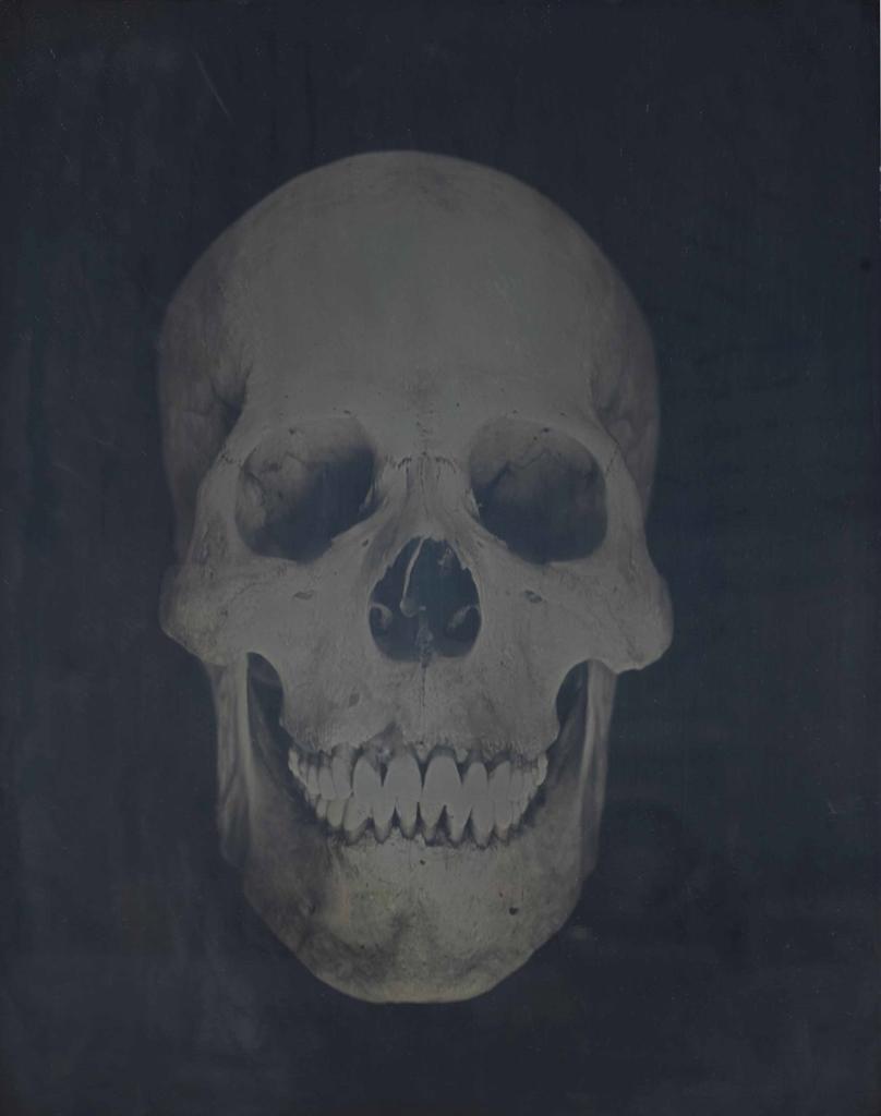 Adam Fuss-Untitled-2002