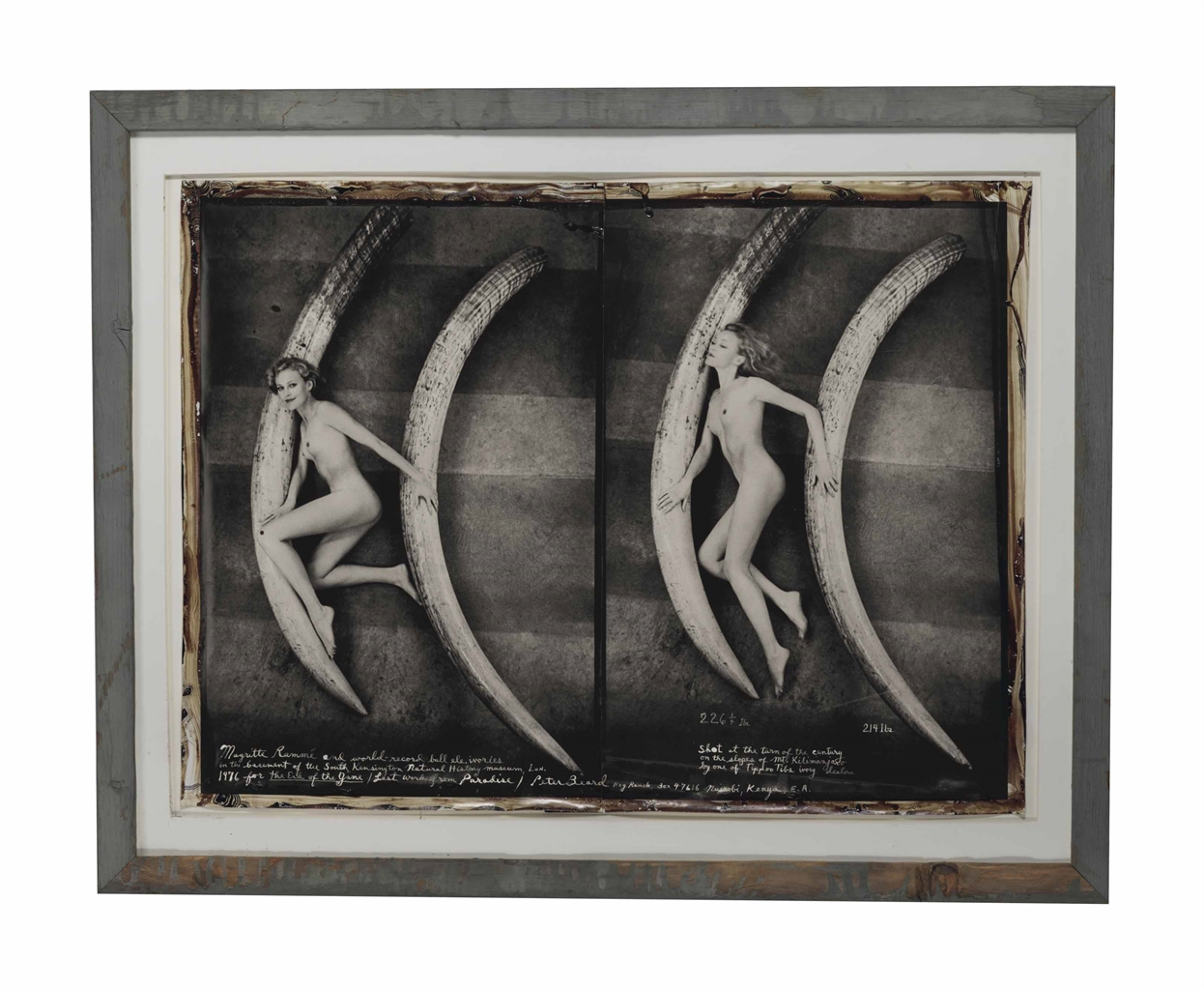 Peter Beard-Margritte Rammé and world record bull ele. ivories-1976