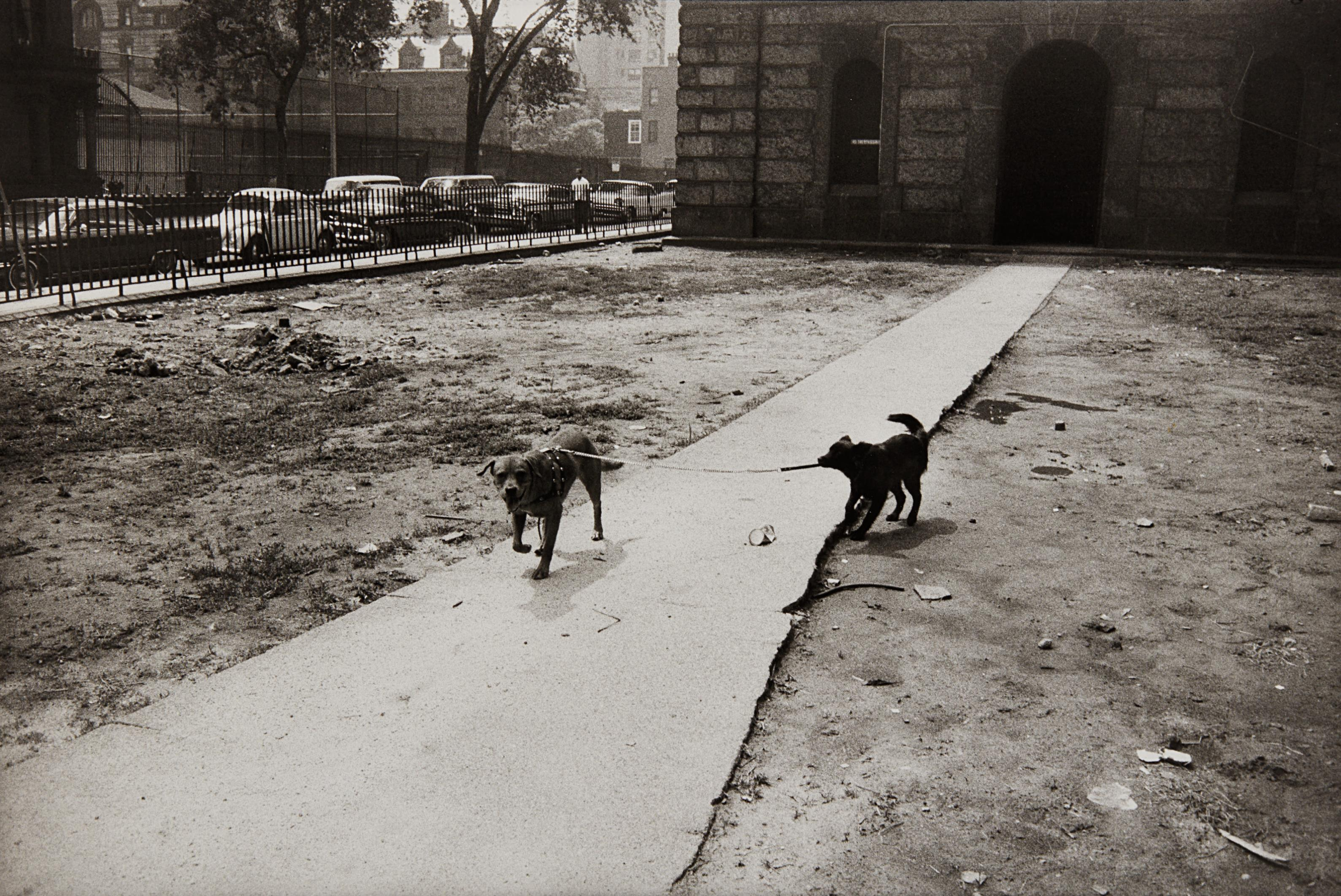 Garry Winogrand-New York City-1965