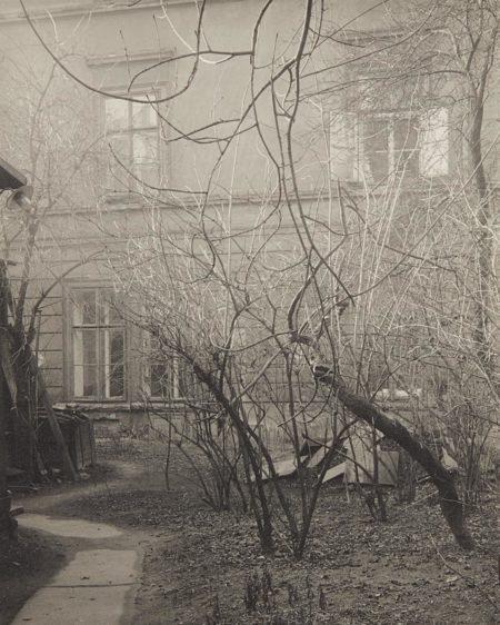 Josef Sudek-View Of My Garden-