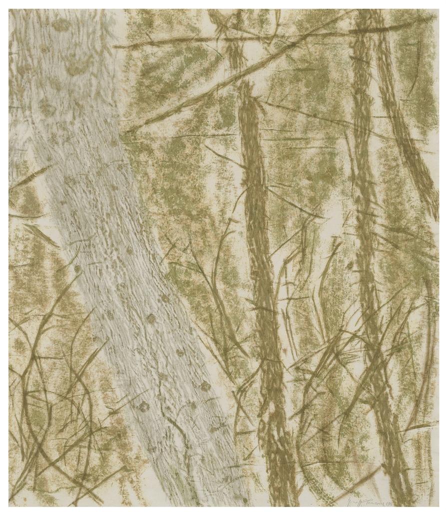Giuseppe Penone-Verde nel bosco (Green in the Woods)-1986