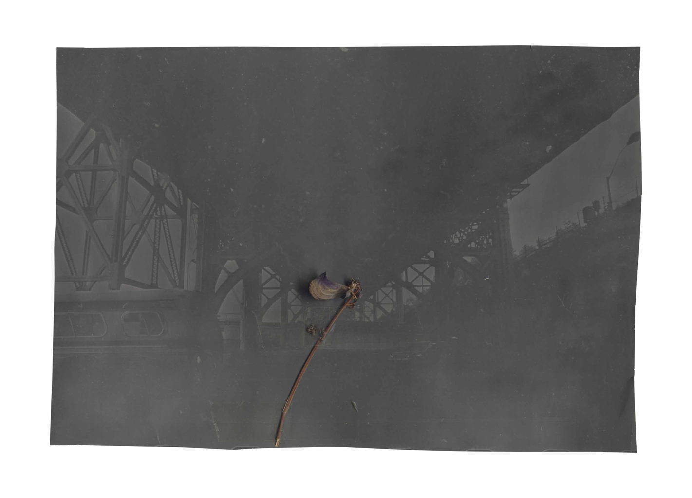 Anselm Kiefer-Ohne Titel (Stahlkonstruktion mit Pflanzenstengel) (Untitled (Steel Construction with Plant Stem))-1970
