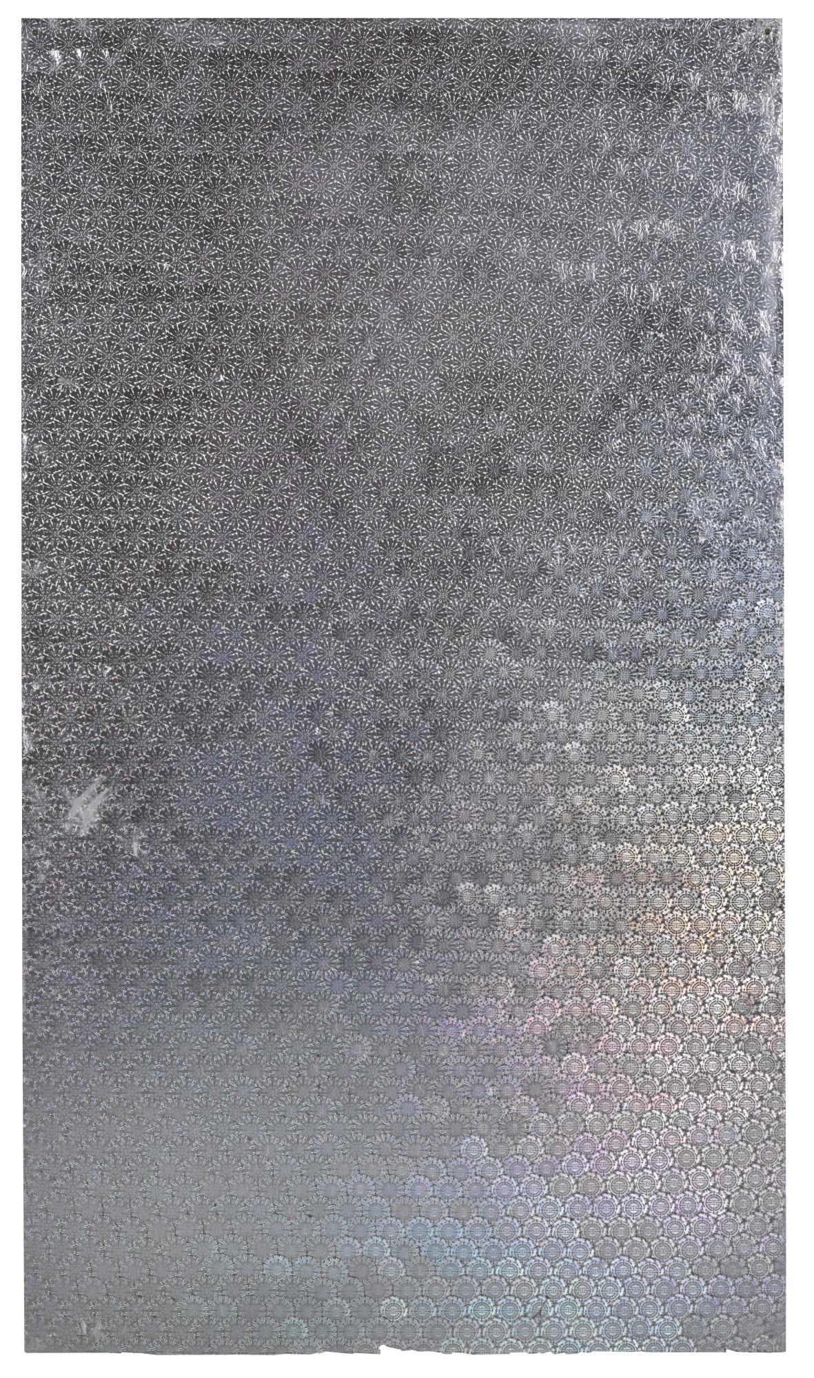 Oliver Laric-Schengen Visa Hologram-2012