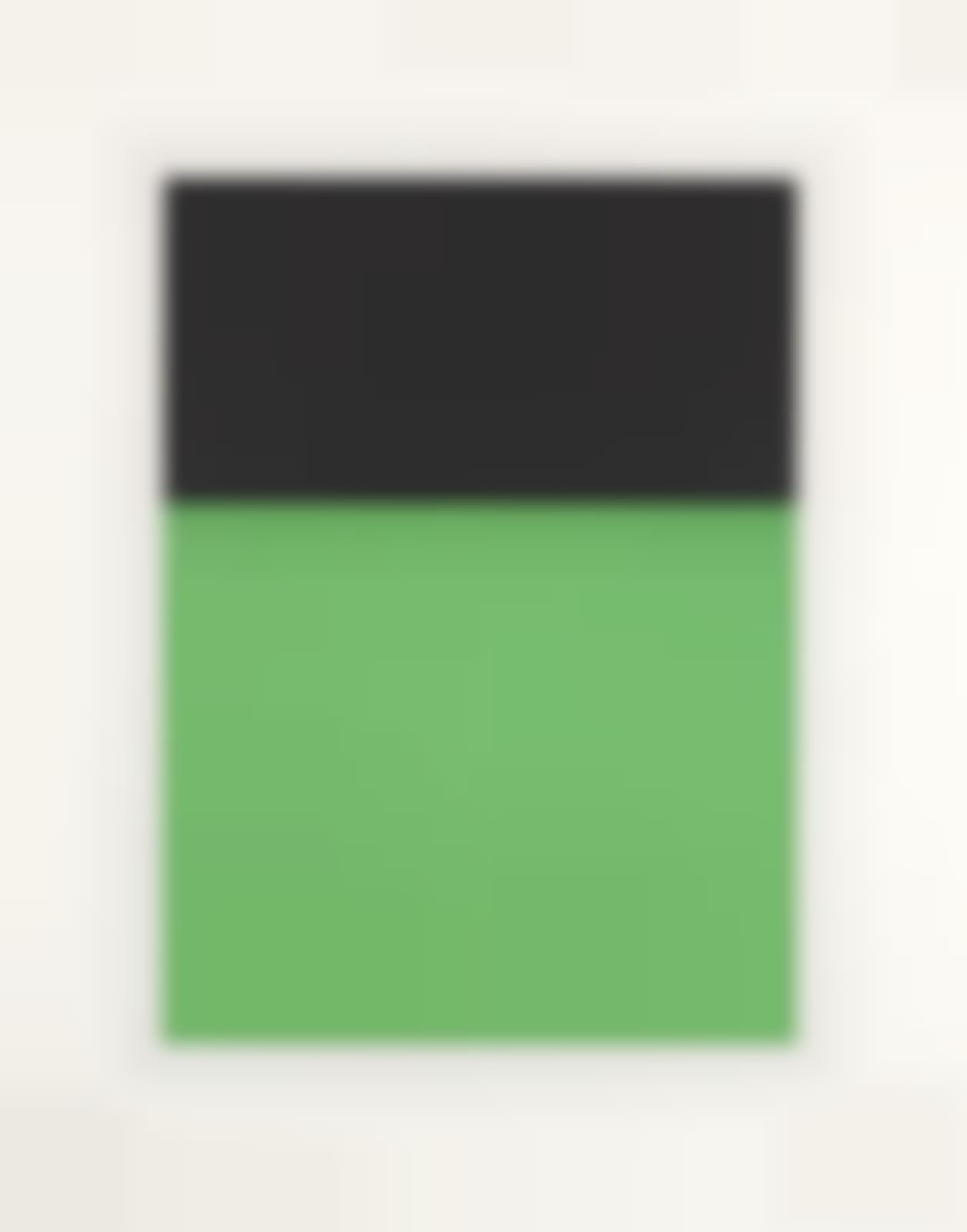 Ellsworth Kelly-Black/Green (A. 68; G. 237)-1970