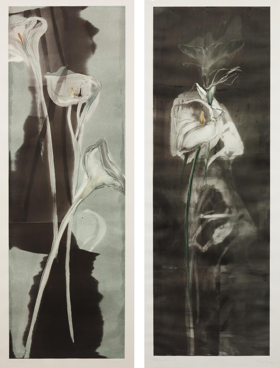 Michael Mazur-Tall Calla II; and Tall Calla II-1985