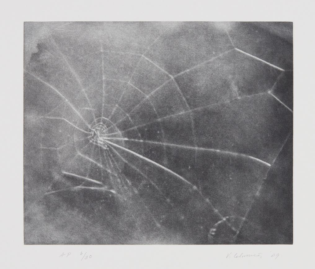 Vija Celmins-Untitled (Web #5)-2009