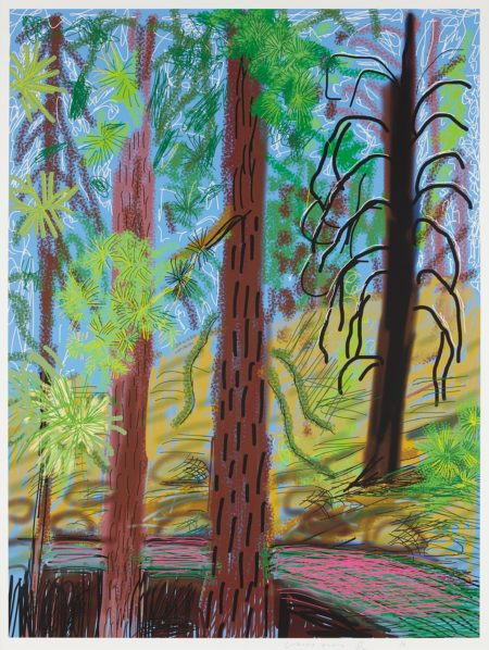 David Hockney-Untitled No. 6 from the Yosemite Suite-2010