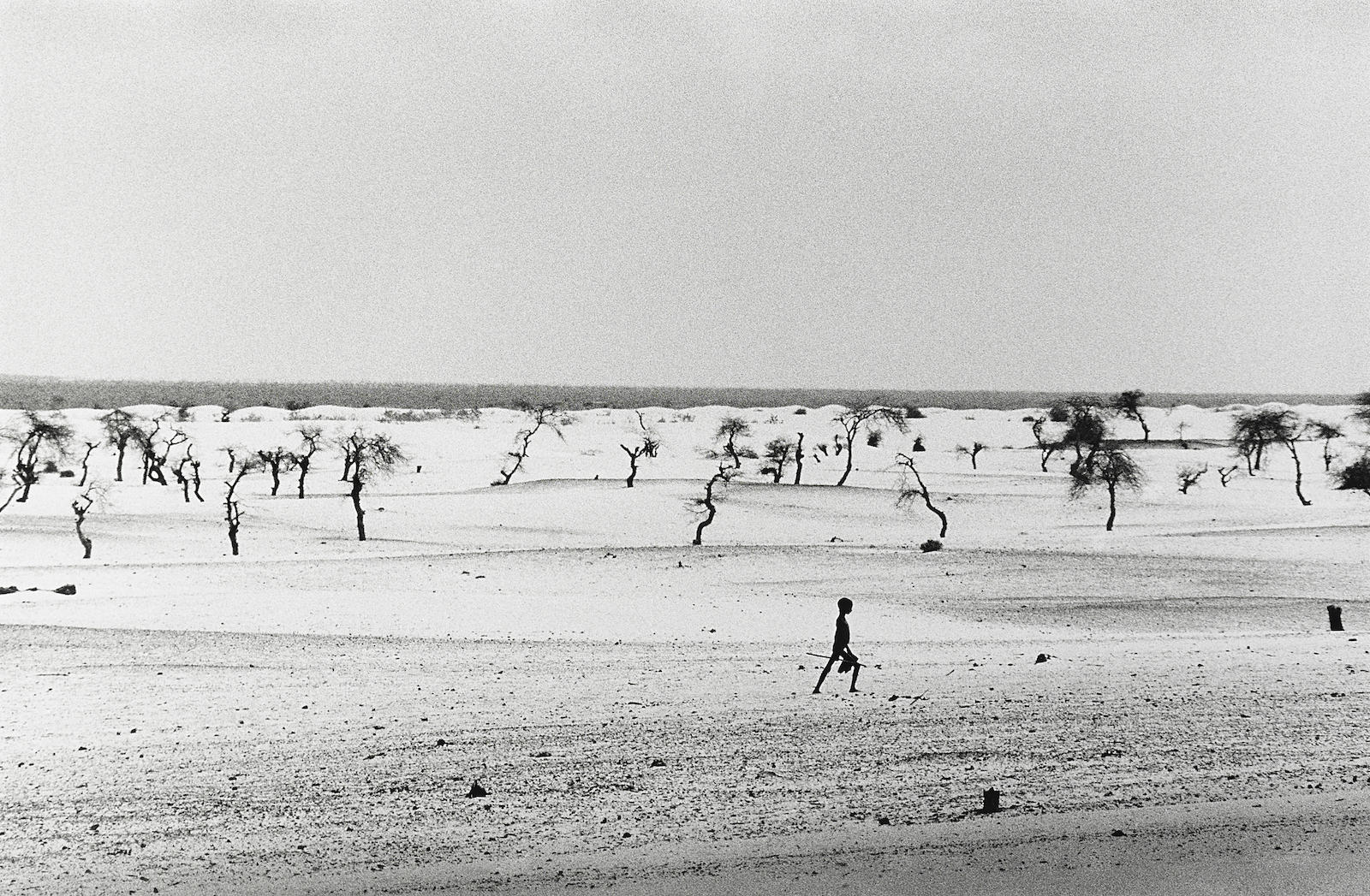 Sebastiao Salgado-Site of the now dried Lake Faguibine, Mali, Africa-1985