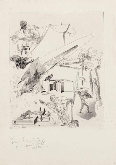 Salvador Dali-Cranes mous et harpe cranienne-1935