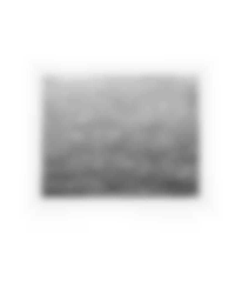 Vija Celmins-Ocean Surface (Second State)-1985