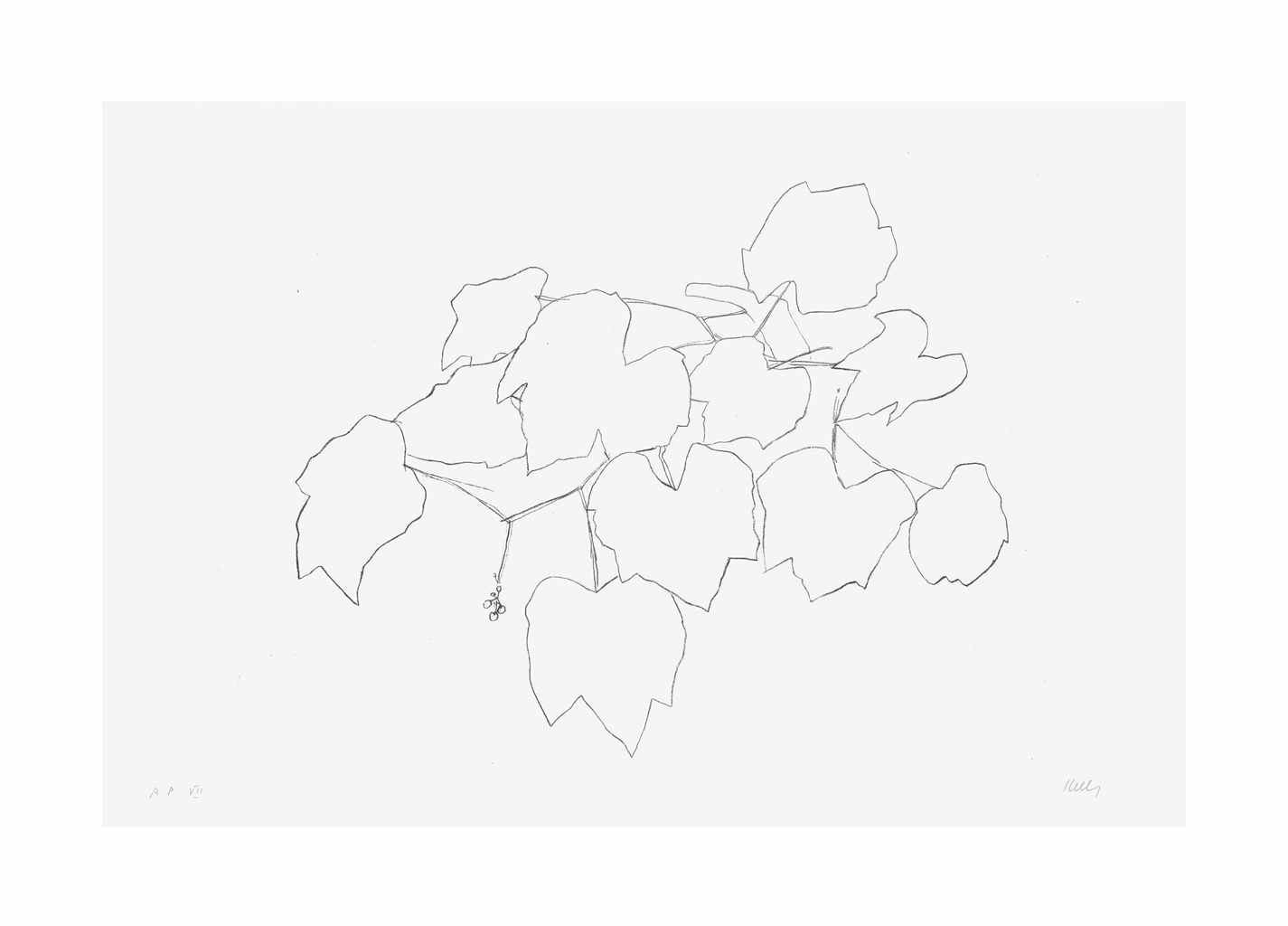 Ellsworth Kelly-Grape Leaves I, from Leaves-1974