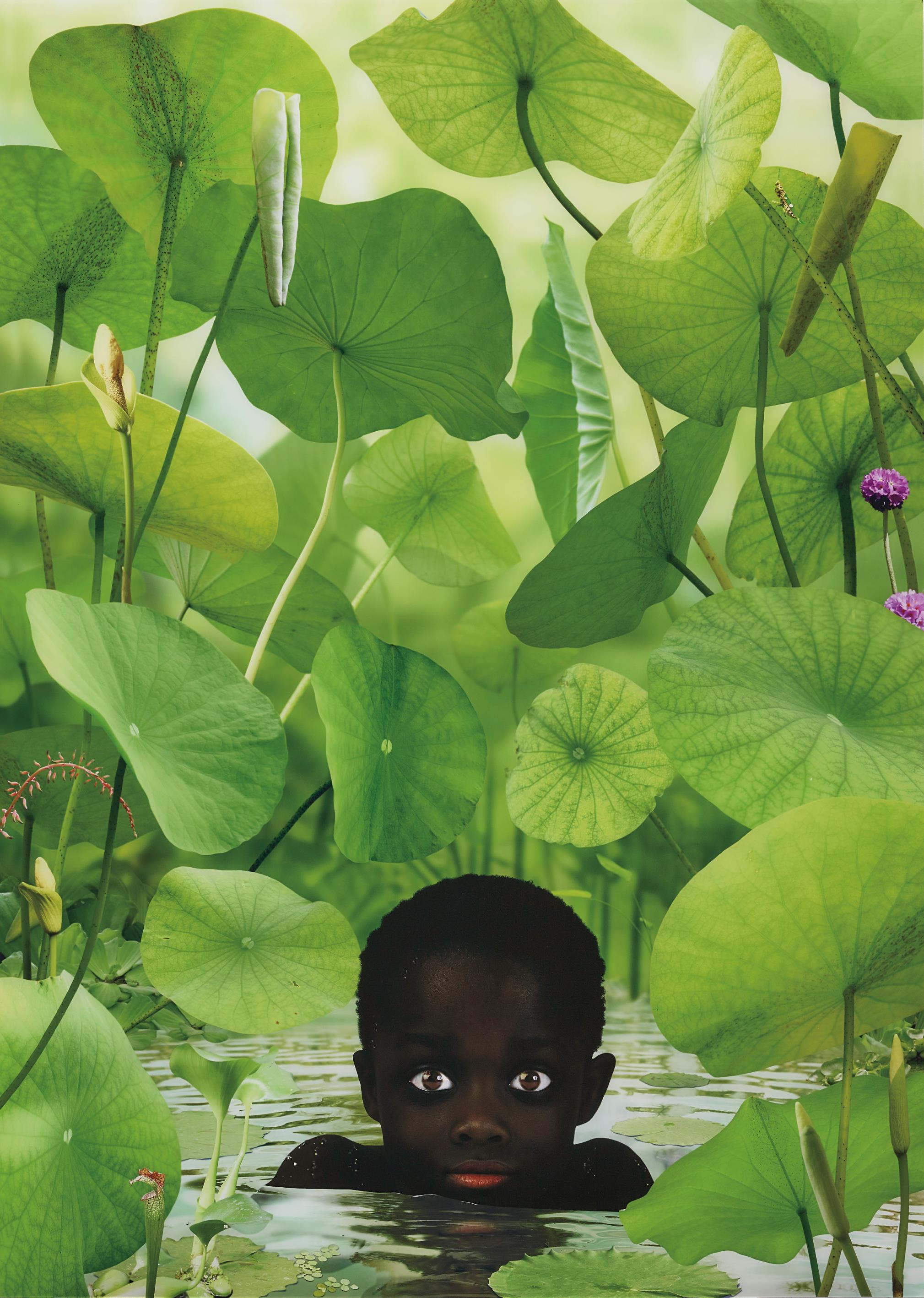 Ruud Van Empel-World #14-2006